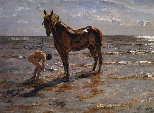 Купание лошади.