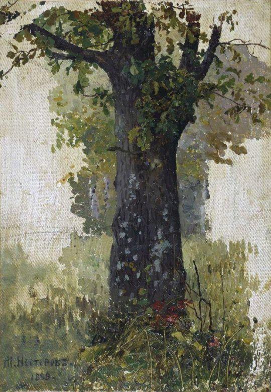 Дуб. 1889