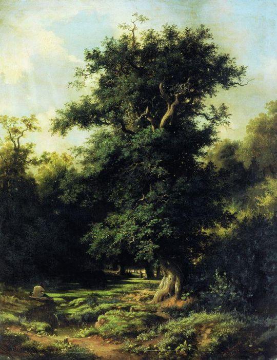 Старый дуб. 1859