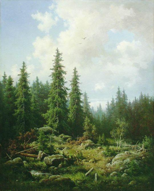 Пейзаж с елями. 1860-е