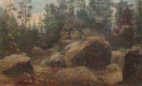 Валуны в лесу