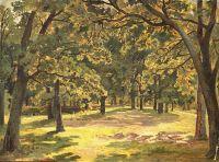 Дубовый лес.