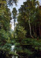 Заросший пруд у опушки леса. Сиверская.