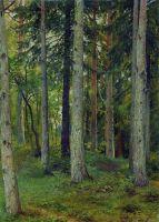 Лес. Начало