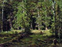 Лес2.