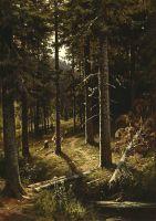 Лесной пейзаж. Дорога.