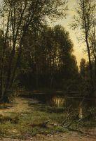 Речная заводь в лесу.