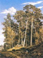Сосновый лес.