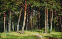 Сосновый лес1