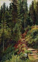 Тропинка в лесу.