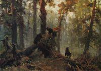 Утро в сосновом лесу. Конец1