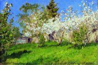 Цветущие яблони1.