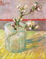 Ветвь цветущего миндаля в вазе
