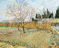 Фруктовый сад с цветущими персиками