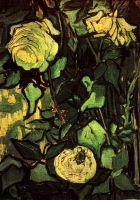 Розы и Жук