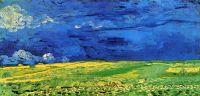 Пшеничное поле под облачным небом