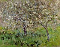 Яблони в цвету в Живерни