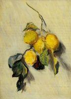 Ветка лимонов