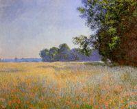 Овсяное и макавое поле, Живерни