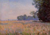 Овсяное поле