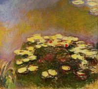 Водяные лилии 12