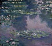 Водяные лилии 13