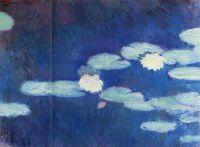 Водяные лилии 17