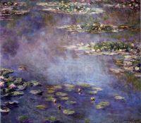 Водяные лилии 5