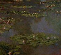 Водяные лилии 8