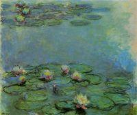 Водяные лилии 20