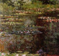 Водяные лилии 24