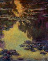 Водяные лилии 27