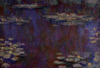 Водяные лилии 38