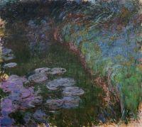 Водяные лилии 39