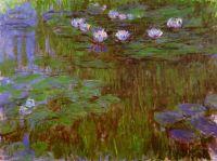 Водяные лилии 43