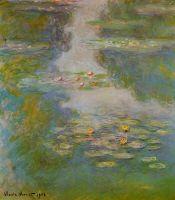 Водяные лилии 56