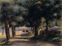 Сосновый лес на Лазурном Берегу