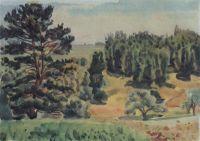 Вид окрестностей Тарусы