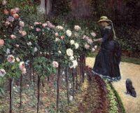 Розы, сад Петит Женневилиер