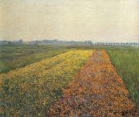 Желтые поля в Женневилиер