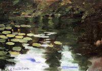 Йеррес, пруд, водянные лилии
