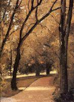 Йеррес, тропинка старых деревьев в парке
