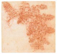 Рисунок 121