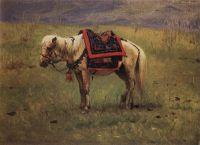 Гималайский пони