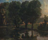 Деревья у воды