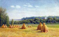 Сельский вид.2 Открытка