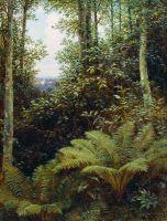 Папоротники. 1892 Холст, масло. 68 x 52 НН