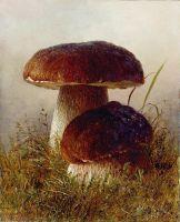 Белые грибы. Этюд. Картон, масло. 20.2 x 16.2 Николаев