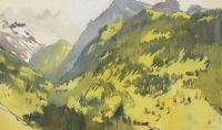 В горах. Швейцария.
