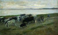 Стадо овец. 1900-е